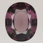 Fig. 2 - Spinello rosa porpora ct 26.73